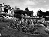 Westcliff Gardens Photographic Print by Fred Musto