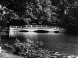 Kenwood House Bridge Photographic Print by Fred Musto
