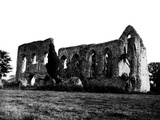 Newark Priory, Surrey Photographic Print by Fred Musto
