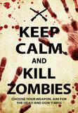 Keep Calm Kill Zombies Tin Sign Plaque en métal