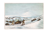 Sious Hunting in Snow Giclee Print by George Catlin