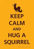 Keep Calm Squirrel Tin Sign Blikkskilt