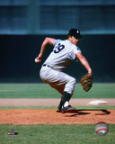 Mickey Lolich Action Photo