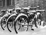 Snow-Covered Bicycles Photographic Print by Fred Musto