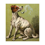 Mother Hubbard, Smoking Giclee Print by Harrison Weir