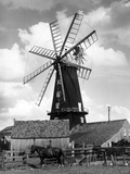 Heckington Windmill Photographic Print by J. Chettlburgh