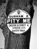 'Pity Me' Signpost Photographic Print by J. Chettlburgh