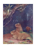 Animal, Capybara 1909 Giclee Print by Louis Sargent