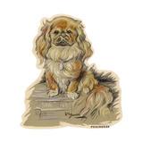 Dogs, Pekingese, Dawson Giclee Print by Lucy Dawson