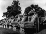 Egypt Karnak Photographic Print by Pontin Brown