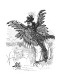 Bird of Prey - Harpy Fashion 1892 Giclee Print by Linley Sambourne