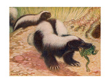 Animals, Skunk 1909 Giclee Print by Louis Sargent