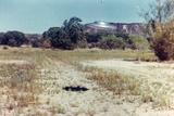 UFOs, New Mexico, Villa Fotodruck von Paul Villa