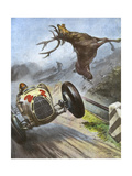 Car Hits Stag Giclee Print by Vittorio Pisani