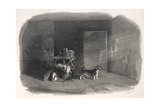 Turnspit Dog Type Giclee Print by WR Smith