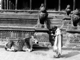 Nepal Patan Photographic Print by Valentine Ward Evans