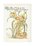 Plants, Hemerocallis Spec Giclee Print by Walter Crane