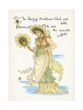 Helianthus Species Giclee Print by Walter Crane