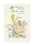 Crocus Giclee Print by Walter Crane