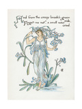 Plants, Myosotis Giclee Print by Walter Crane