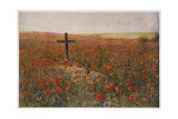 In Flanders Fields Giclee Print