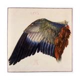 Wing Reproduction procédé giclée par Albrecht Dürer