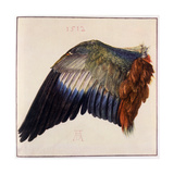 Wing Giclée-Druck von Albrecht Dürer