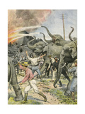 Working Elephants 1907 Giclee Print by Achille Beltrame