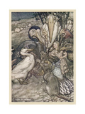 Alice and the Dodo Premium Giclee Print by Arthur Rackham