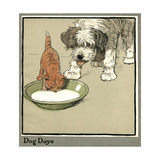 Rufus the Cat Drinks from a Bowl, Watched by a Dog Giclee Print by Cecil Aldin
