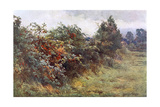 Hedgerow with Berries Giclee Print by Berenger Benger