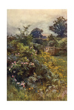 Summer Hedgerow Giclee Print by Berenger Benger