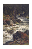 River and Moss Giclee Print by Ernst Heyn