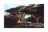 The Cedars of Lebanon Giclée-Druck von Edward Lear