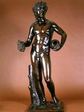 Figure of Bacchus Photographic Print by Francois Girardon