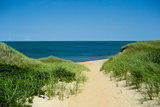 Nantucket Beach Dunes Photo Poster Prints