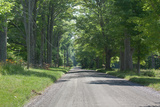 Country Road Berkshires MA Photo Poster Posters