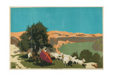 The Jordan Valley, from the Series 'Buy Jaffa Oranges' Giclee Print by Frank Newbould