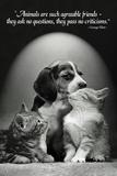 George Elliot Animals Quote Poster Print