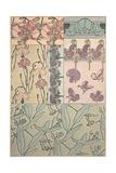 Plate 41 from 'Documents Decoratifs', 1902 Lámina giclée por Alphonse Mucha