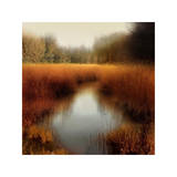Sunlit Pond II Giclee Print by Madeline Clark