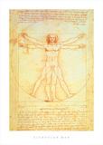 Vitruvian Man Art by  Leonardo da Vinci