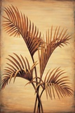 Treasured Palm I Giclee Print by David Parks