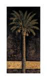 Dusk Palms I Giclee Print by Andre Mazo