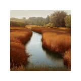 Sunlit Pond I Giclee Print by Madeline Clark