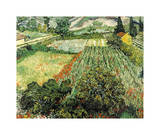 Field of Poppies, Saint-Remy, c.1889 Giclee Print by Vincent van Gogh