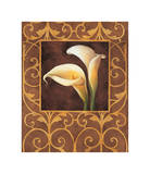 Ornamental Callas Giclee Print by Andres Gonzales