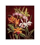 Orchid Trio II Giclee Print by Rodolfo Jimenez