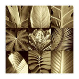 Tropical Leaves II Giclee Print by Caroline Kelly