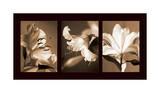 Lily Trio Giclee Print by Caroline Kelly